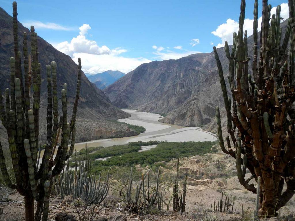 Rocky Contos - Castus and river vista