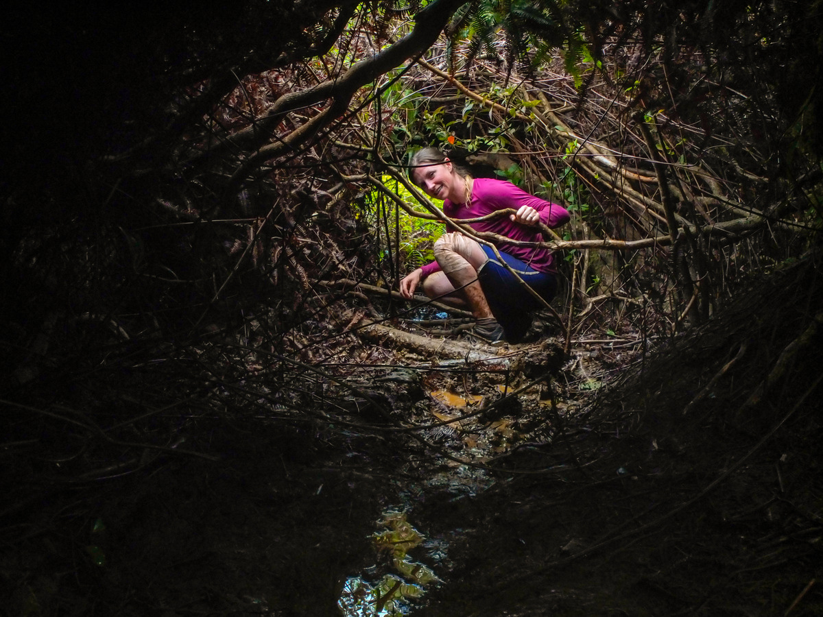 """Not many explore the center of the island. Maybe its the dense vegetation that forces one into a tunnel in the mud along the so-called """"trail."""" Just a guess."""