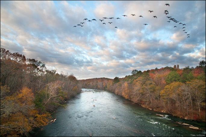 The Chattahoochee River from I-75 bridge. Photo credit: Chattahoochee River Keeper