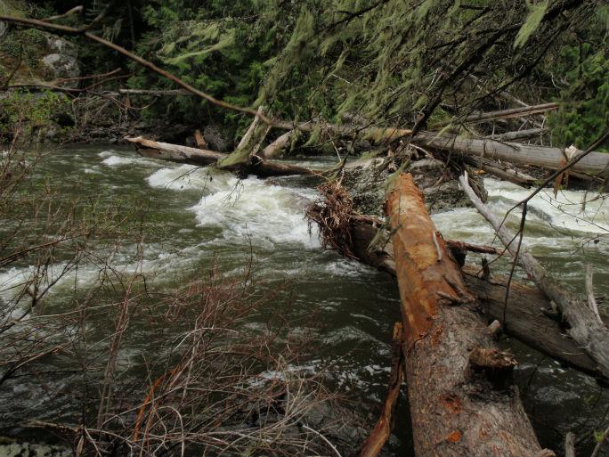 lolo-creek-4_web