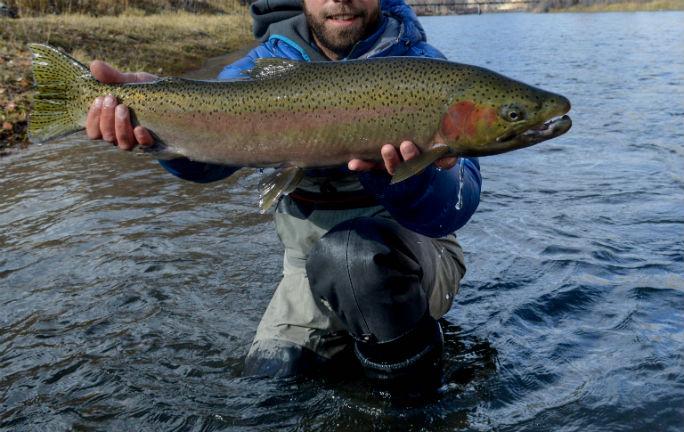 salmon-dest-5_web